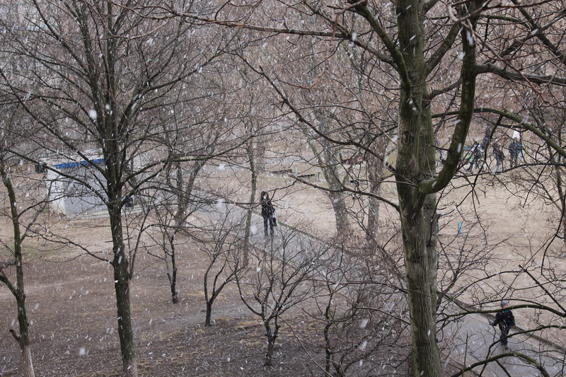 март. снег в Запорожье