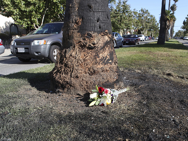 A small bouquet of flowers lies next to a charred tree and glass fragments on Highland Avenue in Los Angeles, California