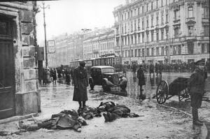 КРЫСИНАЯ ВОЙНА В БЛОКАДНОМ ЛЕНИНГРАДЕ. Чтобы спасти ленинградцев от нашествия крыс, в город завезли четыре вагона дымчатых котов
