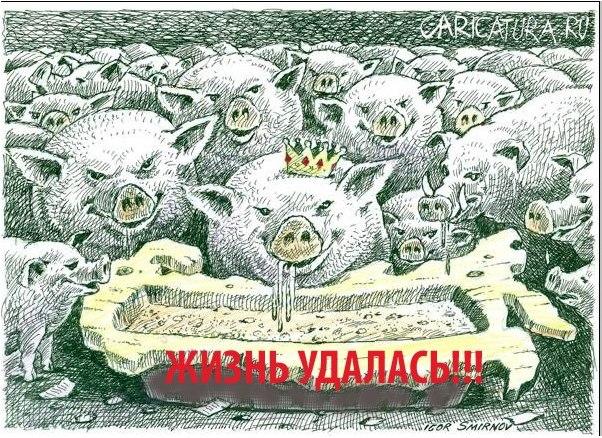 У КОРМУШКИ. Кто зарабатывает на тендерах при новой власти   Хроники и  Комментарии