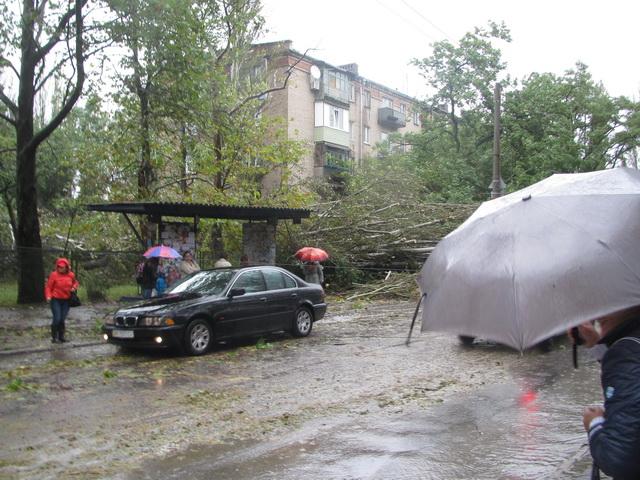 улица Счастливая. Упавшие деревья порвали троллейбусные провода