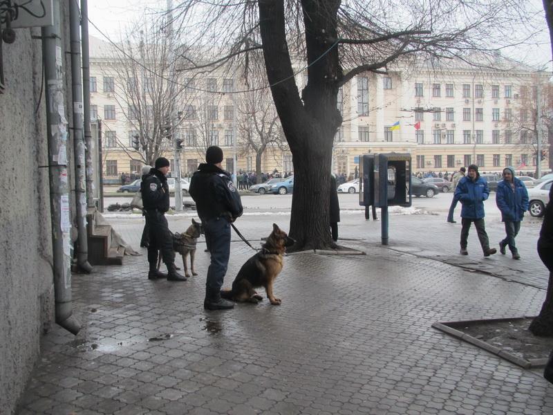 Милиция  с овчарками рядом со зданием Запорожского горсовета  на всякий случай