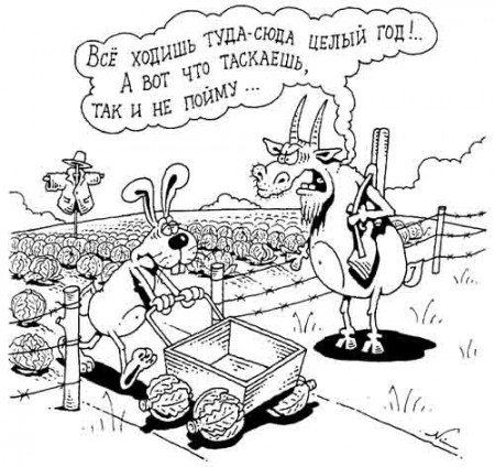 """Подозрение НАБУ политически мотивировано и ставит под угрозу работу агрохолдинга """"Укрлендфарминг"""", - глава компании Бахматюк - Цензор.НЕТ 6474"""