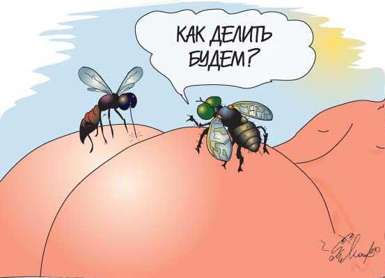 акции-пчелы