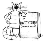 Конституция=кот