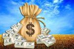 хлеб доллары