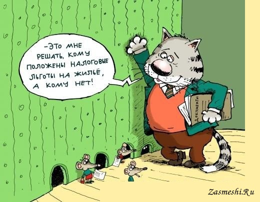 налоговик кот