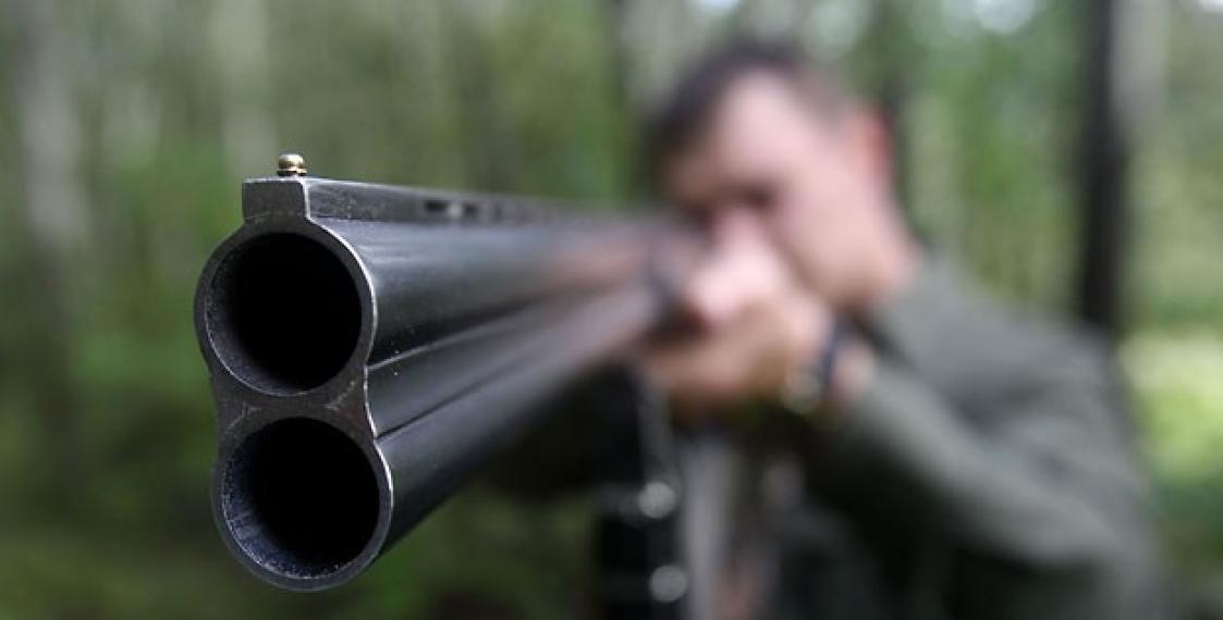 ружье выстрел