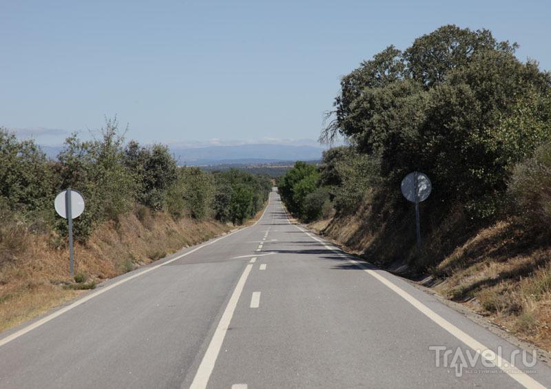 дорога сельская Португалия