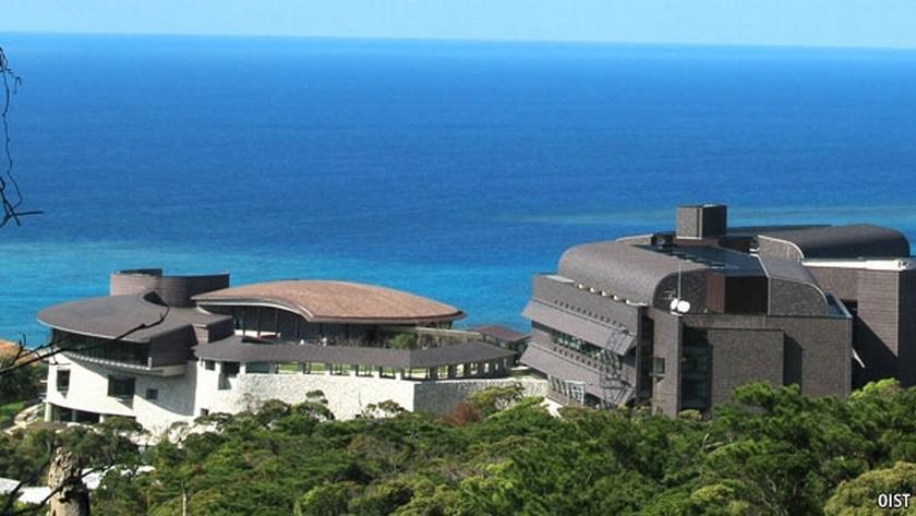 Окинавский институт
