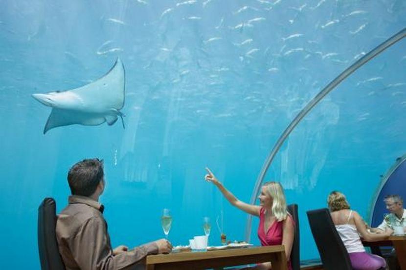 ресторан подводный